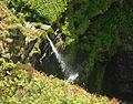 Pentargon waterfall (4870).jpg