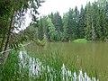 Permskiy r-n, Permskiy kray, Russia - panoramio (1207).jpg