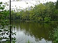 Pfaffensee - panoramio.jpg