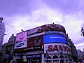 Piccadilly Circus (Londres, Angleterre).jpg