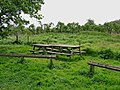 Picnic tables at Tiddesley Wood car park - geograph.org.uk - 1301421.jpg