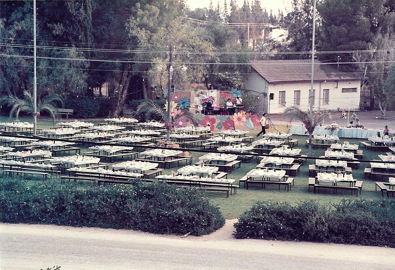 חתונה על הדשא הגדול בכפר מימון