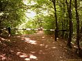 Pilisszántó, 2095 Hungary - panoramio (1).jpg