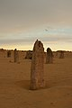 Pinnacles gnangarra-45.jpg