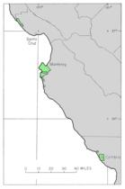 Pinus radiata radiata range map.png
