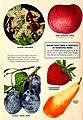 Planting guide (15755191783).jpg