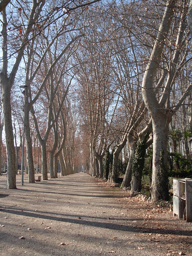 Parque de la Dehesa