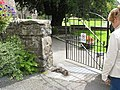 Playing 'dead' at the cemetery gate - geograph.org.uk - 536601.jpg