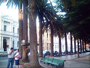 Square Park of Curico, Chile(Plaza de Armas de...
