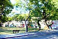 Plaza vista desde Calle Avenida General Rivera - panoramio.jpg
