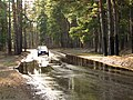 Pludi druvciema 2011 - panoramio (53).jpg