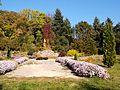 Poltava Botanical garden (54).jpg