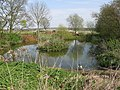 Pond opposite Elmsted Court Farm - geograph.org.uk - 1246035.jpg