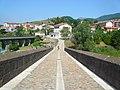 Pont Vell de Sant Joan de les Abadesses P1460363.jpg