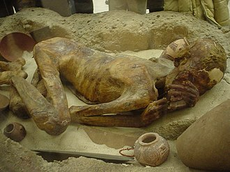 Burial - A naturally mummified body in the British Museum.