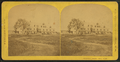 Prospect House, from Robert N. Dennis collection of stereoscopic views 3.png