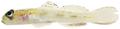Psilotris boehlkei - pone.0010676.g179.png