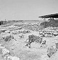 Quasileh, archeologisch onderzoek van een necropool, Bestanddeelnr 255-3795.jpg