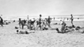 Queensland State Archives 1128 Beach scene Maroochydore January 1931.png