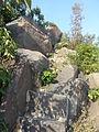 Quehill stairs near peak.jpg