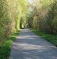 Radweg - panoramio - Immanuel Giel.jpg