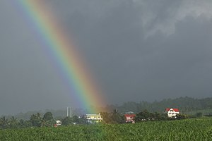 Rainbow over the house in the sugar cane field...