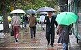 Rainy day of Tehran - 20 November 2011 32.jpg