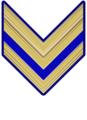 Rank insignia of sergente paracadutista of the Italian Army (1941).png