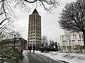Rathaus Kornwestheim Weihnactsbaum1.jpg