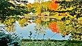 Refléter la beauté de l'automne. - Colorful reflexion in the fall - panoramio.jpg