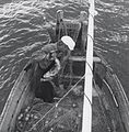 Removing salmon from gillnet.jpg