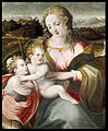 Ridolfo Ghirlandaio - Madonna and Child with the Young Saint John the Baptist - Walters 371025.jpg