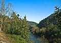 Rio Vouga - Portugal (3166458718).jpg