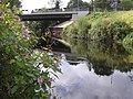 Ripple in the river, Omagh - geograph.org.uk - 562816.jpg
