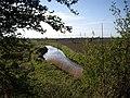 River Alt - geograph.org.uk - 406444.jpg