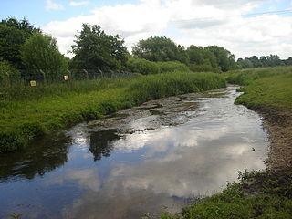 River Tud river in Norfolk, United Kingdom