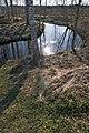 River of swamp water - panoramio.jpg