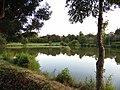 Rivière Mère, au sud de la cité médiévale de Vouvant.jpg