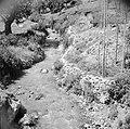 Rivier in het landschap van Gilead, Bestanddeelnr 255-5685.jpg