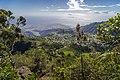Roche Vert-Bouteille 2 - Paysage de l'île de La Réunion.jpg
