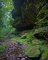 Rock Overhangs - Leo Petroglyph (9680487033).jpg
