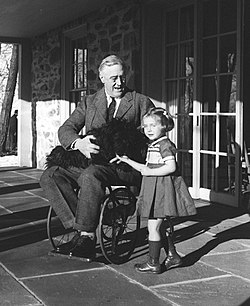 Roosevelt in a wheelchair.jpg