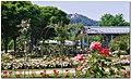 Rosengarten...PL01 - panoramio.jpg