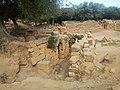 Ruines Romaines Tipaza 49.jpg