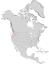Salix columbiana range map 0.png