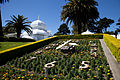 San Francisco Conservatory of Flowers-5.jpg