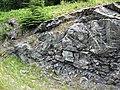 Sandorite lamprophyre (Sandor Dike, Neoarchean, 2.703 Ga; Route 17 roadcut northeast of Wasp Lake & north of Wawa, Ontario, Canada) 6 (48341400862).jpg