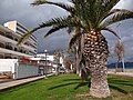 Sant Llorenç des Cardassar, Balearic Islands, Spain - panoramio (14).jpg