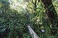 Santa Elena Reserve 03.jpg