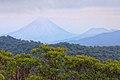 Santa Elena Reserve 08.jpg